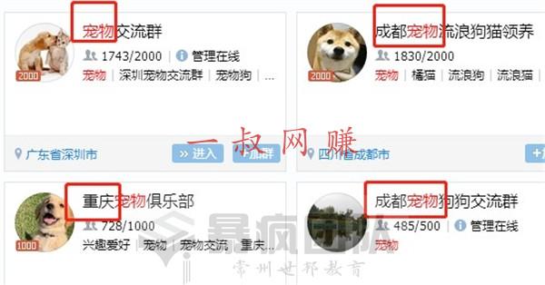 赚钱 _ 养宠物赚钱吗,关于宠物的赚钱项目有哪些插图6