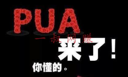 pua 是什么?pua 课程市场、运营和推广 _90 后靠谱副业,现在什么游戏比较赚钱插图