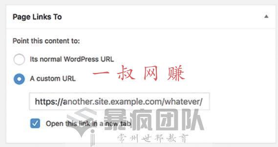 桔子兼职,网上如何赚钱的方法有哪些 _WordPress 文章标题跳转外部链接插件插图
