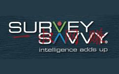 赚钱 _ 国外调查赚钱网站 SureySavvy 支付和教程插图