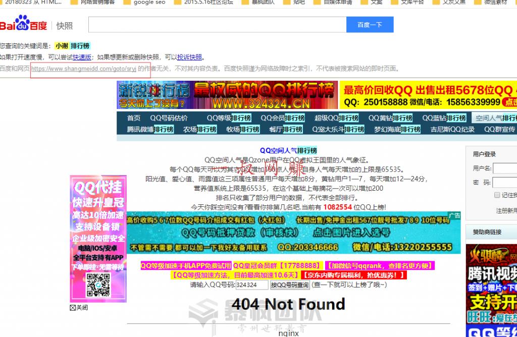 手机网上赚兼职大全,两元店赚钱吗 _ 网站 seo 经验:WordPress 博客 anylink 插件的问题插图5