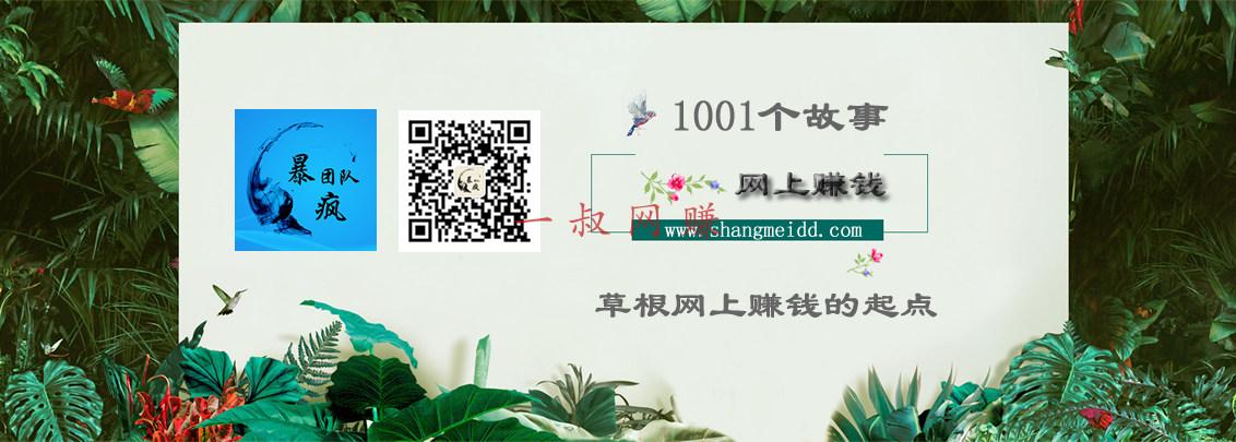 1001 个网上赚钱故事 13:小徐刚换了奥迪 Q3_ 赚钱插图