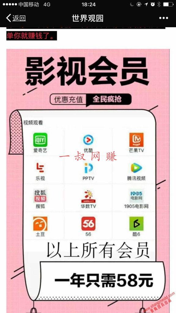 零投资月赚万元-影视 VIP 全平台年打包 58 元 _ 投资插图