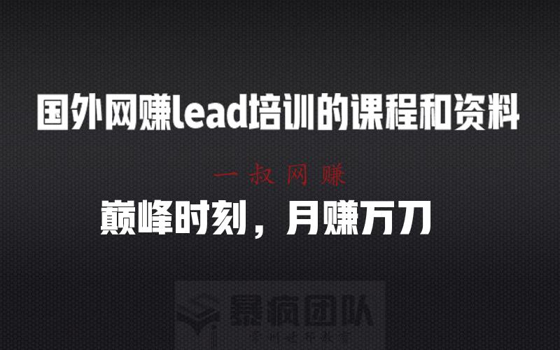 明星副业,有什么赚钱的副业 _(会员项目)国外网赚 lead 培训的课程和资料全套插图